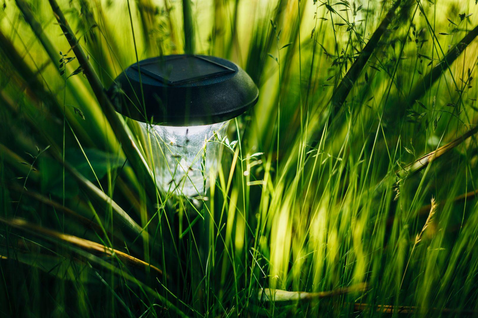 Landscape Lighting Griffin, GA